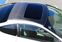 NRG Carbon Roof Cover Overlay 02-06 Acura RSX (DC5) with Sunroof